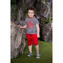 Комплект трикотажный для мальчиков: футболка, шорты 713018